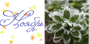 Календарь праздников на ноябрь