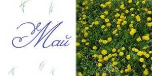 Календарь праздников на май