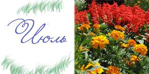 Календарь праздников на июль