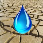 День борьбы с засухой
