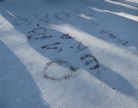 Зимние конкурсы на улице